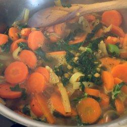 vegan soup carrot kale ipswich suffolk plantic ethics
